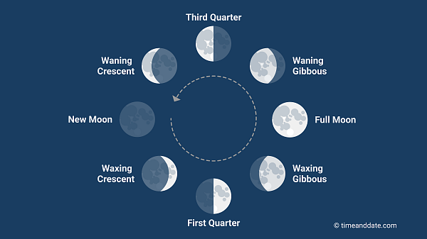 All moon phases